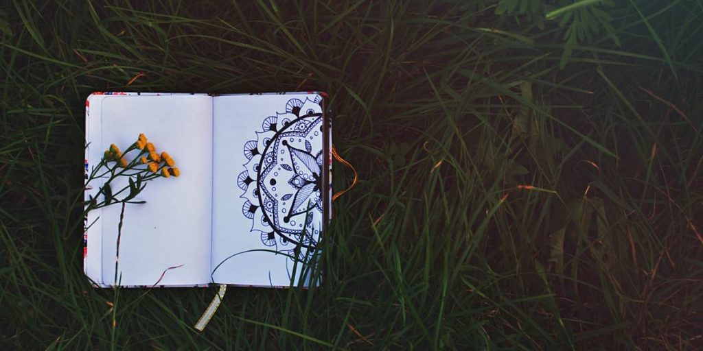 A mandala coloring book lying in dark grass
